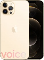 Apple iPhone 12 Pro Max (leaked images)